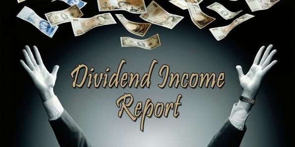 Dividend Income Report